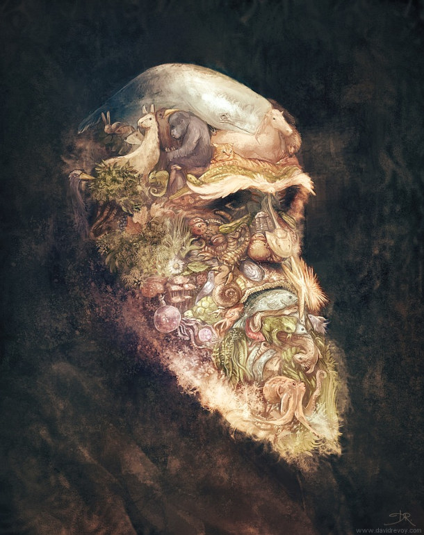 Portrait-of-Charles-Darwin_by-David-Revoy